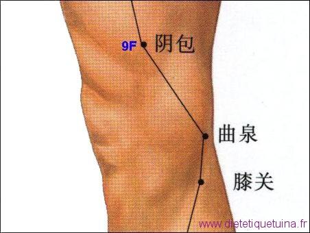 Localisation de 9F sur la jambe